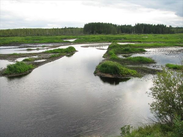 Устье р.Орлинка