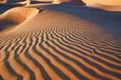 Очарование Сахары