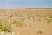 Пустыня Узбекистана