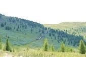 На перевал Монаргы