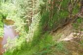 `Маленькая Швейцария` (около оз. Линево)