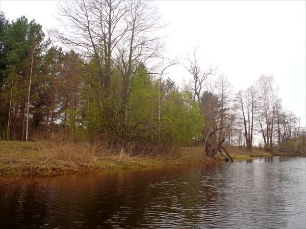 Река Остер.