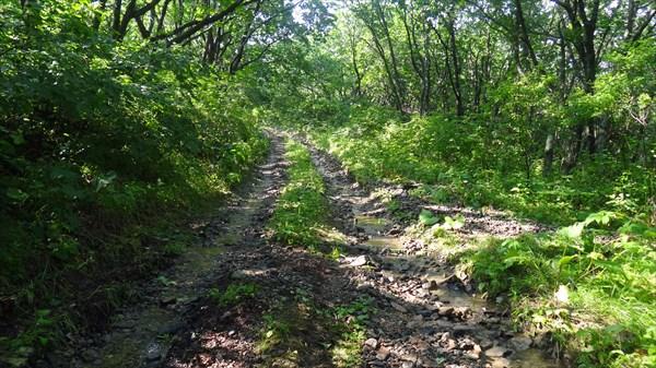 Дорога на Норд-Ост