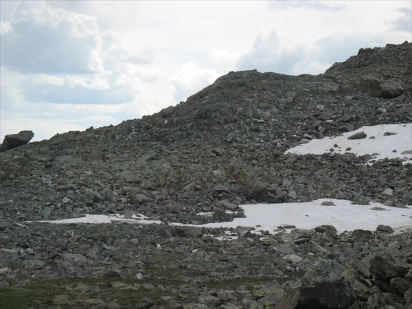 Серны на спуске с перевала Елангаш З.