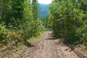 Спуск с Идарского белогорья в долину Кингаша