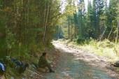 Дорога вдоль р. Кингаш