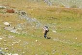 Серпантин на Катандинский перевал