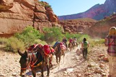 Вещи перевозятся на лошадях. Внутри каньона