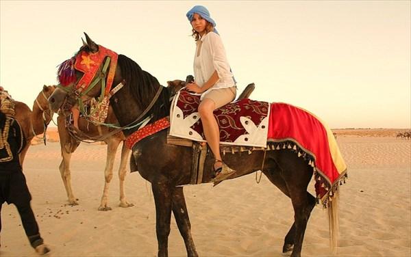 Арабский скакун одного из бедуинов