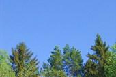 Голубое небо.