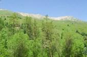 Вид из долины нарзанов