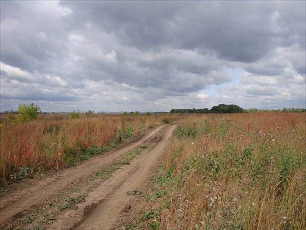 Дорога через поле к Москве-реке