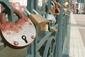 даже у Замкового Моста, самого рыбного места в городе?!