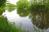 Река Мура