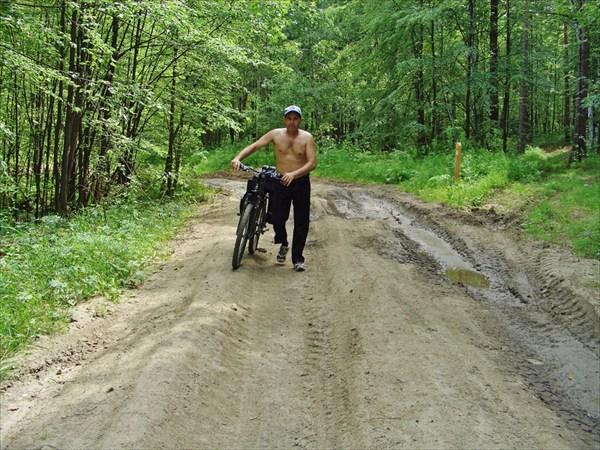 Эх,лесные дороги.
