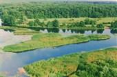 Воронежский государственный природный заповедник