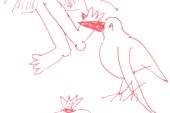 Чайка, утаскивающая из палатки туриста