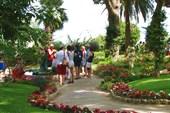 Остров Капри. `Райские` кущи