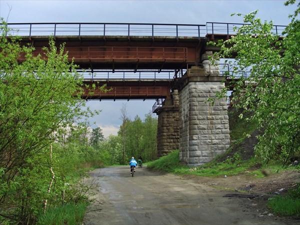 Мост в лесу.