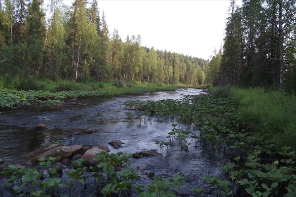Река Ыджидляга.