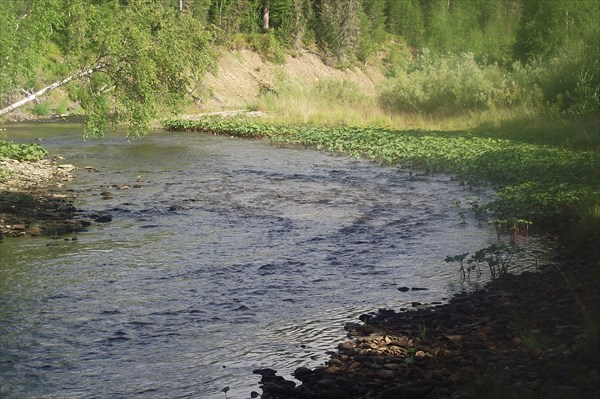 Река Печора_02