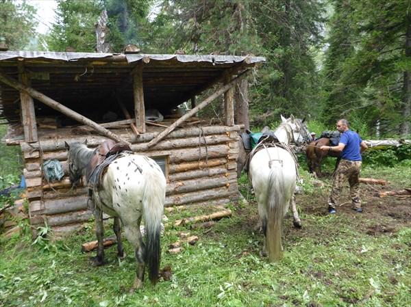 Начинающий конюх Артём