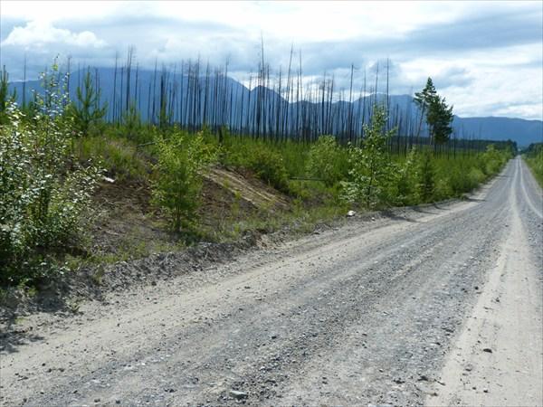 Дорога на Кумору