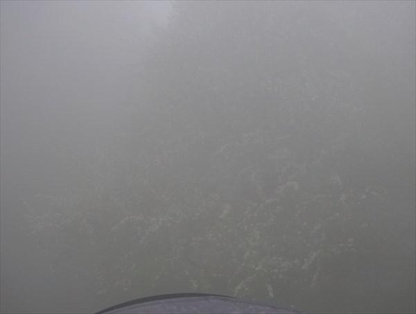 Яблони в тумане призрачны