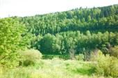 Долина Сылвы
