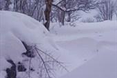 Глубина снежных заносов