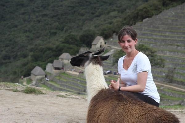 Лама в Мачу-Пикчу с Катей