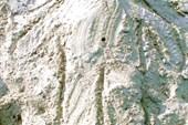 Нюта - песочный человек