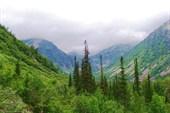 Долина ручья Высокогорный