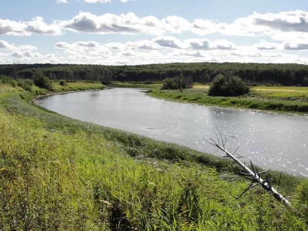 Правая протока к озеру.