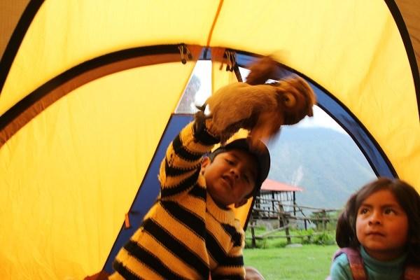 Местные детишки играют с совушкой