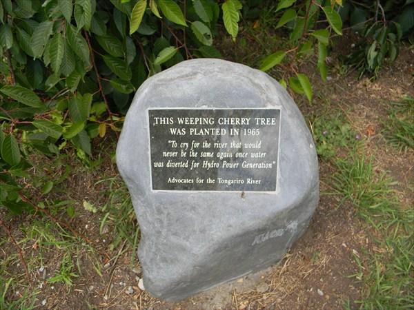 Мемориальный камень для плакучей ивы