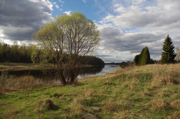 Волга возле Кривцово