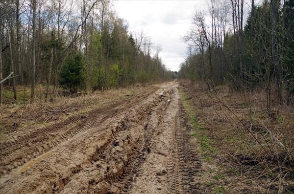 Около 3-х км дороги до Соколово