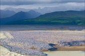 Буйство Исландской природы