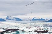 Ледяная Лагуна (Jokulsarlon Lagoon)