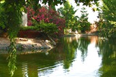 Пруд в городском парке Гранады