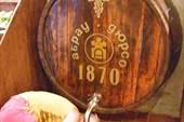 г. Абрау-Дюрсо экскурсия по заводу шампанских вин