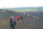 `Мертвый лес`вулкан Тятя