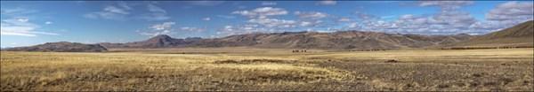Чуйская степь на выходе из долины Сайлюгема. Вид на север.