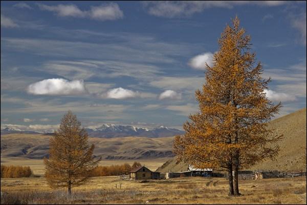 Зимовье в долине Сайлюгема. Вдали Южно-Чуйский хребет