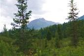 Вершина 2108 м. У подножья Сурунцинского ключа.