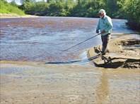 Рыбалка у ручья