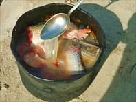 Уха, рыбу уминаю ложкой