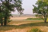 Долина Тузлова