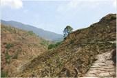 Тропа в д.Гхуни